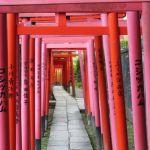 Tokyo Town Walking (Yanesen & Harajuku)